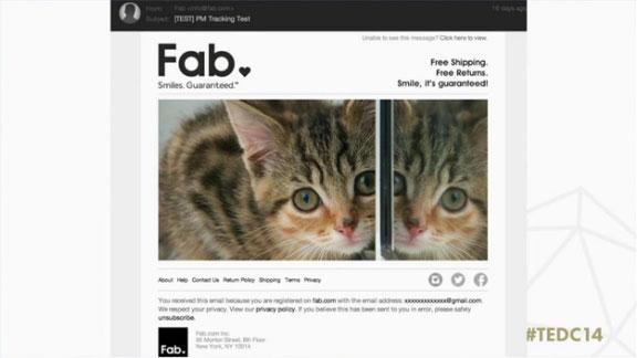 Un e-mail de Fab avec un chat.