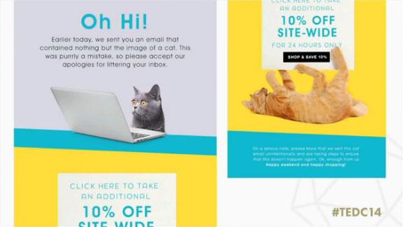 Un autre email de Fab avec des chats